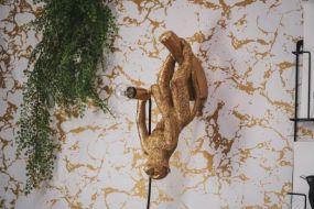Housevitamin hangende apenlamp goud