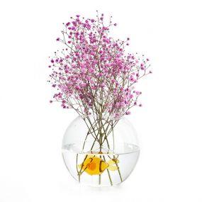 Balvi Fish vase glazen vaas