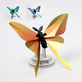 Assembli Chinese Moon butterfly 3D insect