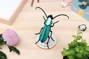 Assembli Rosalia beetle emerald green