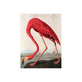 IXXI Flamingo / Audubon muurdecoratie