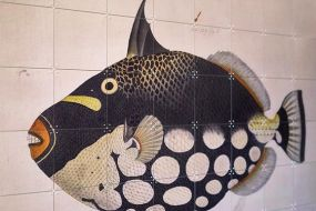 Ixxi Black Fish Naturalis  100 x 80 cm