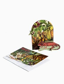 Studio Roof Pop out cards - Extravaganza Lizard