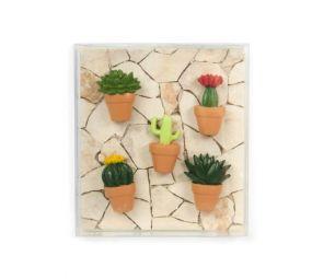 Trendform Cactus magneetset 5 stuks