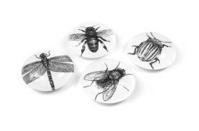 Trendform Insecten Eye magneten set 4 stuks