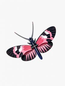 Studio Roof Longwing Butterfly