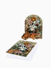 Studio Roof Pop out cards - Extravaganza Leopard