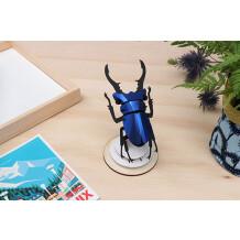 Assembli Stag beetle blue