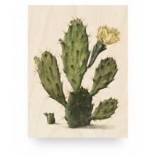 KEK Amsterdam Print op hout Botanical Cactus small