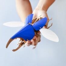 Assembli Hercules kever kit DIY
