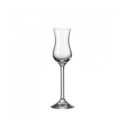 Leonardo Grappa glas Daily set van 6