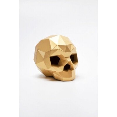 Assembli skull paper kit DIY trofee