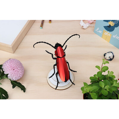 Assembli Rosalia beetle red