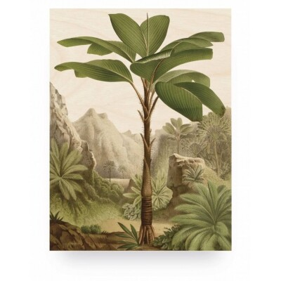 KEK Amsterdam Print op hout Banana Tree Medium