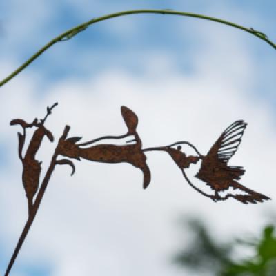Metalbird vogelsilhouet Kolibrie