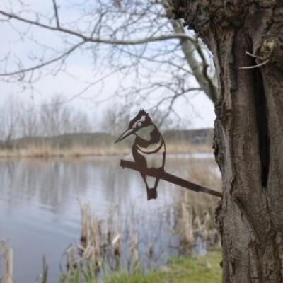 Metalbird vogelsilhouet IJsvogel