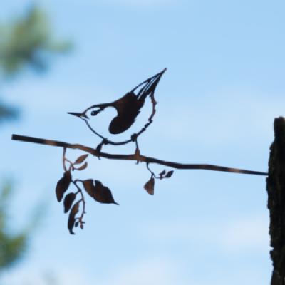 Metalbird vogelsilhouet Boomklever