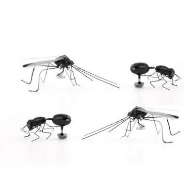 Kikkerland Insect magneten
