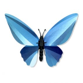 Assembli Birdwing vlinder glanzend azuurblauw