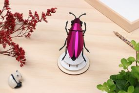 Assembli Jewel beetle pink