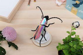 Assembli Rosalia beetle rainbow mirror