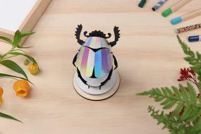 Assembli Scarab beetle rainbow mirror diy