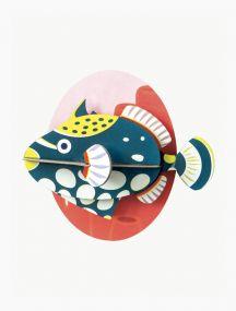 Studio Roof Clown Triggerfish vooraanzicht