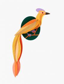 Studio Roof Paradise bird Olango