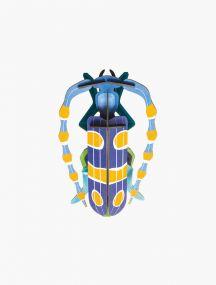 Studio Roof Rosalia beetle
